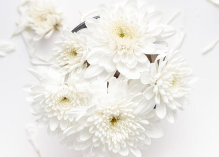 美白サプリで人気のあるLシステインには、どのような美白効果がある